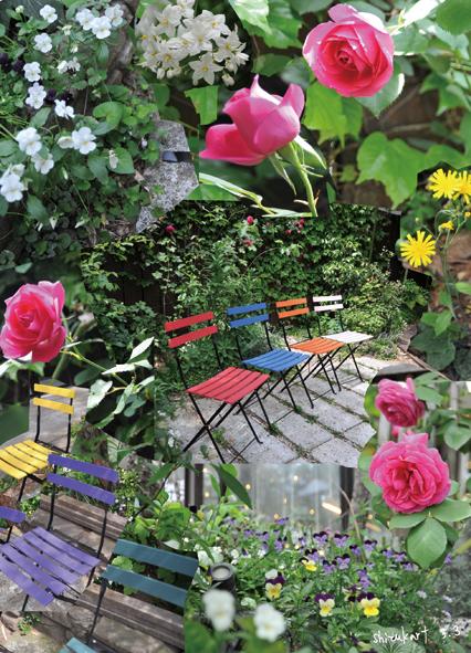 shizukart  Several Picture Books-shizukart_ROSE