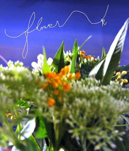 shizukart  Several Picture Books-shizukart_0820flower