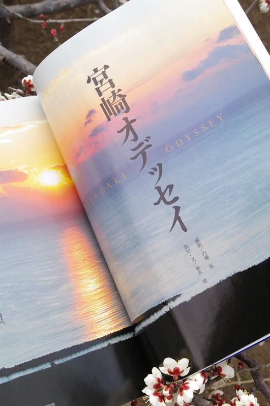 shizukart  Several Picture Books